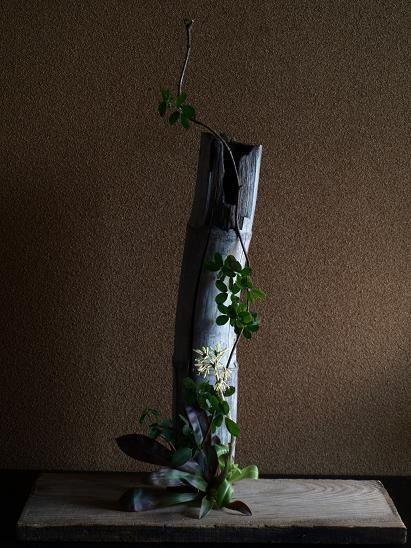 生け手は聴き手//花が器を指さし 器が花を伐る 器は花に傾き 花は器に身を委ねる //朽ち竹と木通、猩々袴