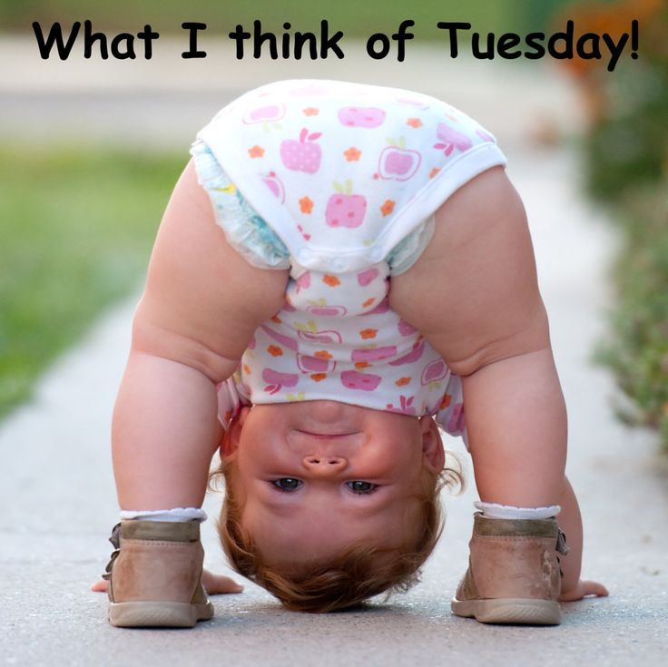 Have a happy Tuesday anyway! Cute kids, Funny babies