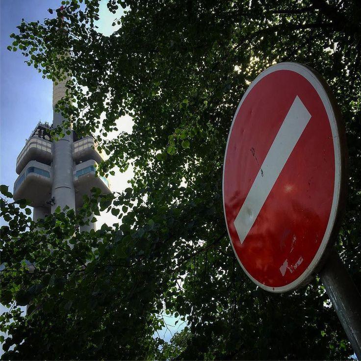 Tudy ne... #roadsign #trees