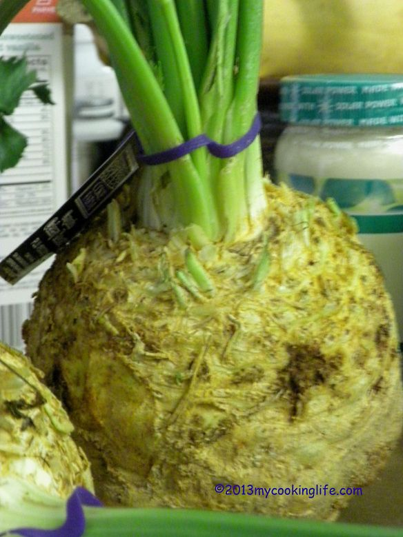 CELERY ROOT CLOSE UP