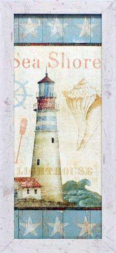 Coastal Shells I Framed Art Print SEA SHORE   Coastal Style Gifts