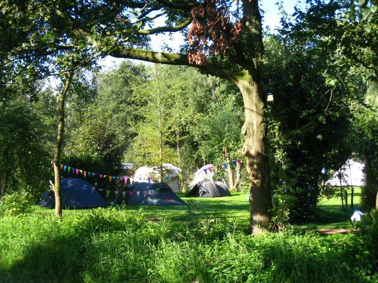 Onze camping - Camping 'Bij Ons' in Groesbeek (vlakbij Nijmegen)