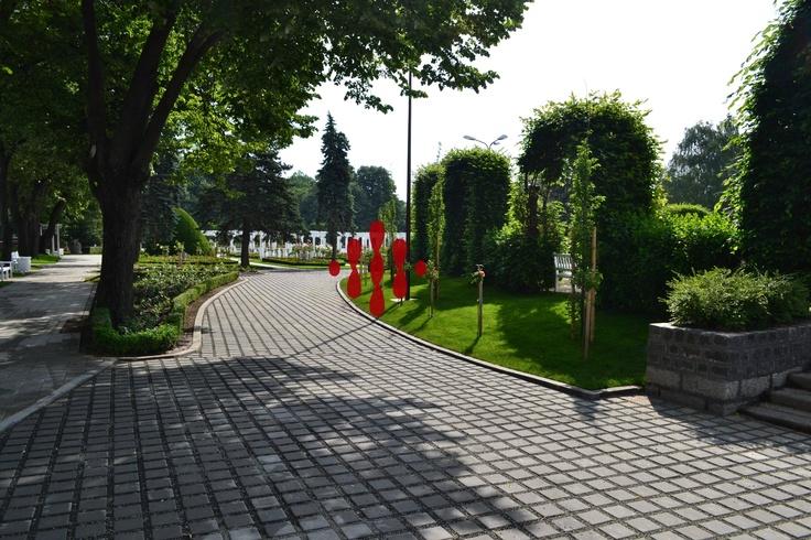 Parcul Rozelor ~ Timisoara    Roses Park ~ Timisoara