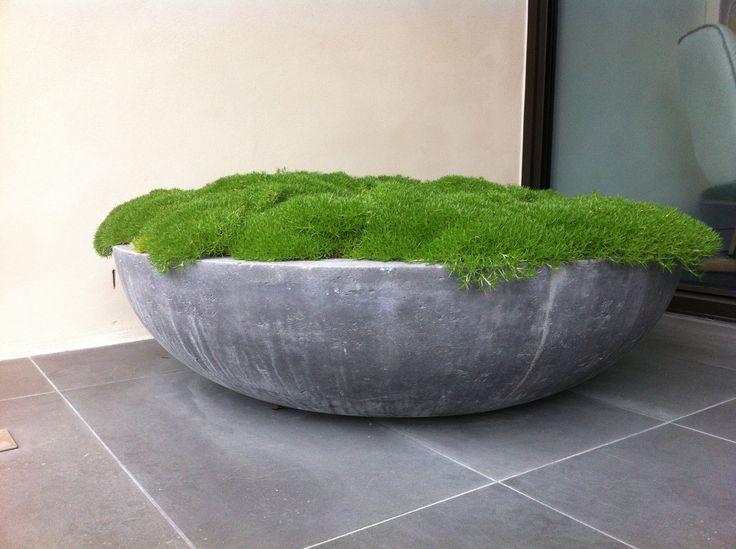 Ben Scott - Garden Design - Spring Rd