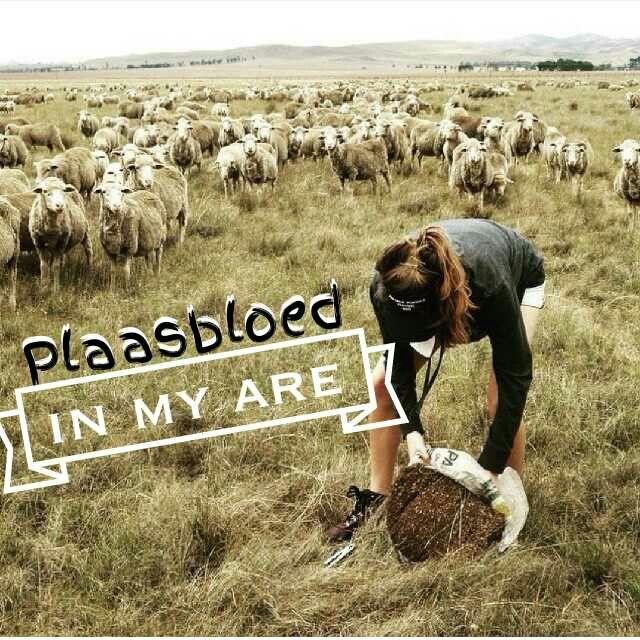 Plaasbloed in my are - Boeremeisie
