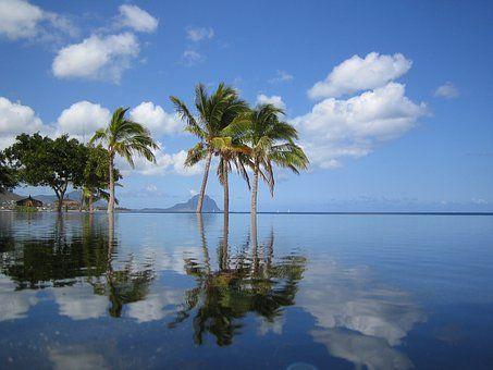 Mauricius, Bazénu, Palmy, Moře