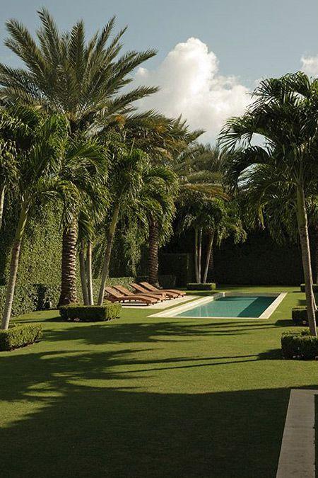 Brian Glucksteinu0027s Favourite Gardens | House U0026 Home #RealPalmTrees #Date  Palms #DatePalms #