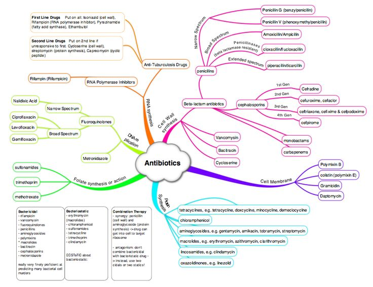 Antibiotics Mindmap - the simplicity in the colorful neuron-esque diagram. Beautiful and genious.
