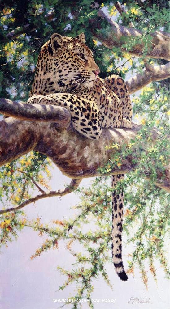 """""""Always Aware"""" leopard oil painting by Guy Coheleach - fabulous wildlife painter"""