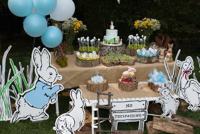 peter rabbit party - Buscar con Google