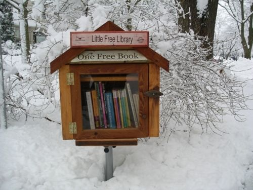 Little Free LibraryIdeas, Reading, Charms, Libraries Book, Free Book, Little Free Libraries, Little Libraries, Front Yards, Public Libraries