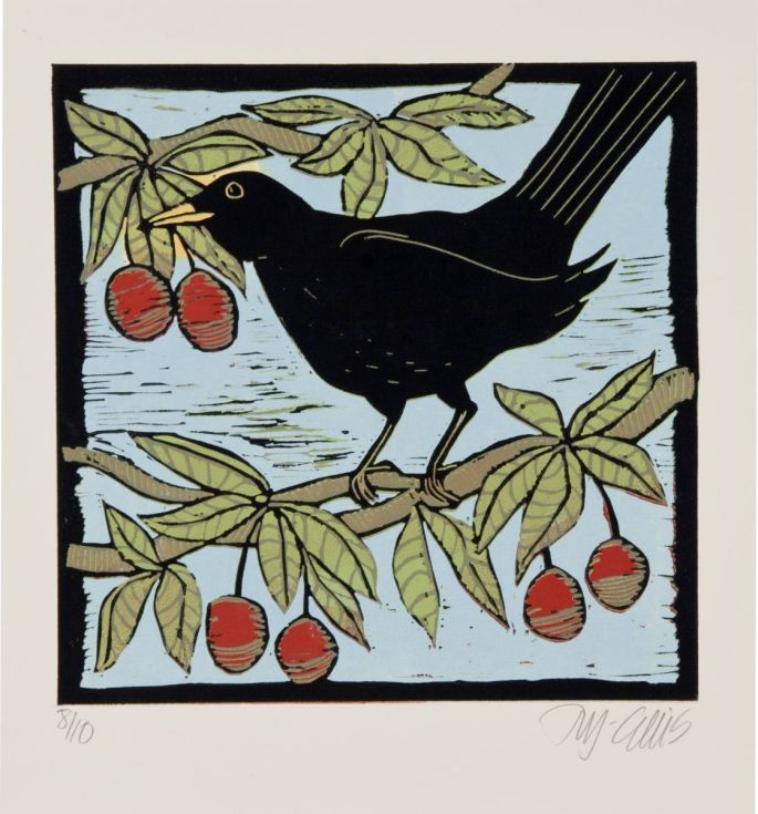 Buy Blackbird in a Cherry tree, reduction linocut, Linocut by Mariann Johansen-Ellis on Artfinder. Discover thousands of other original paintings, prints, sculptures and photography from independent artists.