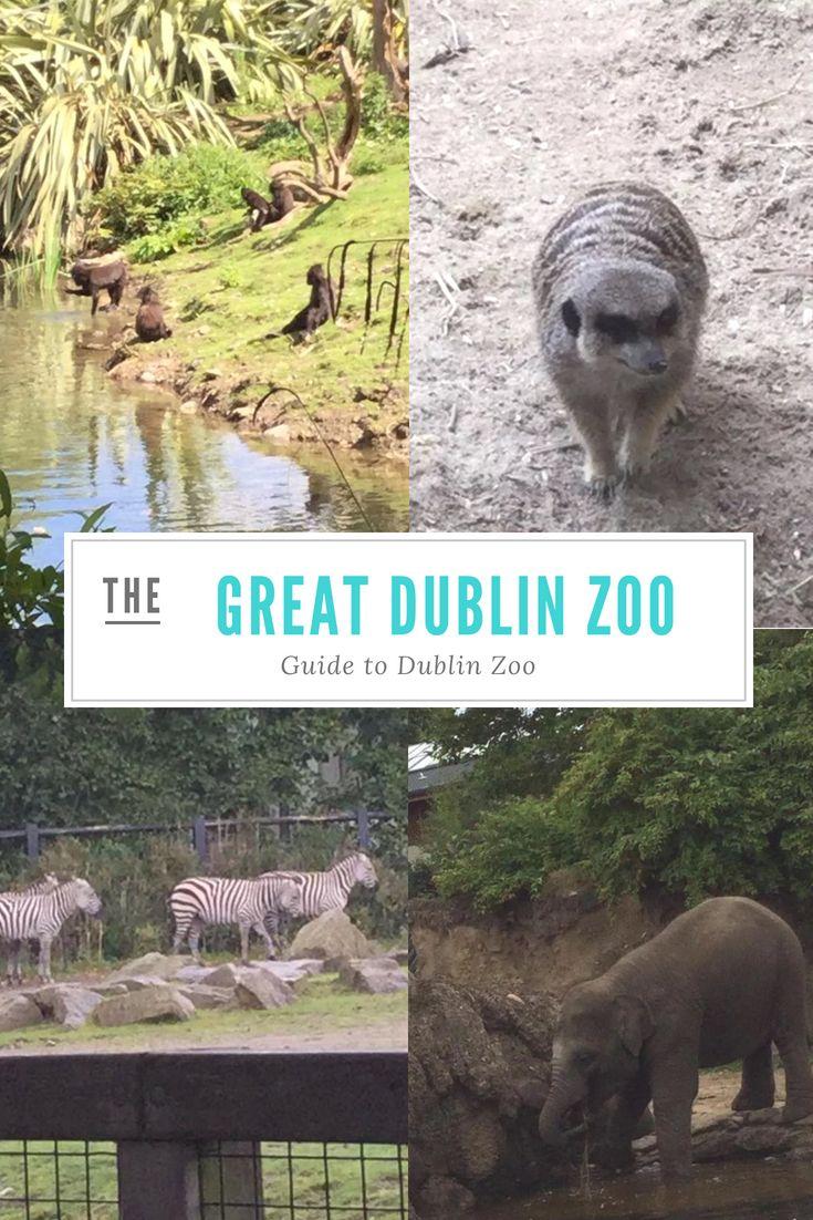 Account Suspended Dublin Zoo Dublin Travel Visit Dublin