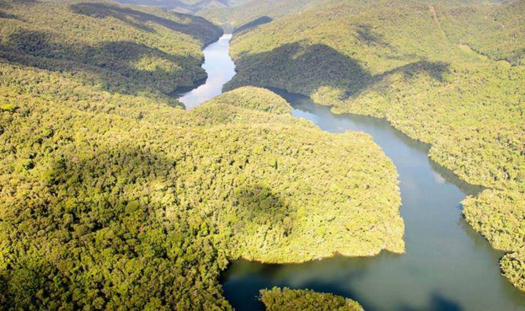 A maior reserva particular de Mata Atlântica do país fica no sul do Estado de São Paulo e está cercada de Parques Estaduais, Parques Nacionais e Áreas de Preservação Natural. O Legado das Águas, coberto de Mata Atlântica, é uma área de preservação que é também um campo de pesquisa e uma startup dentro da Votorantim.