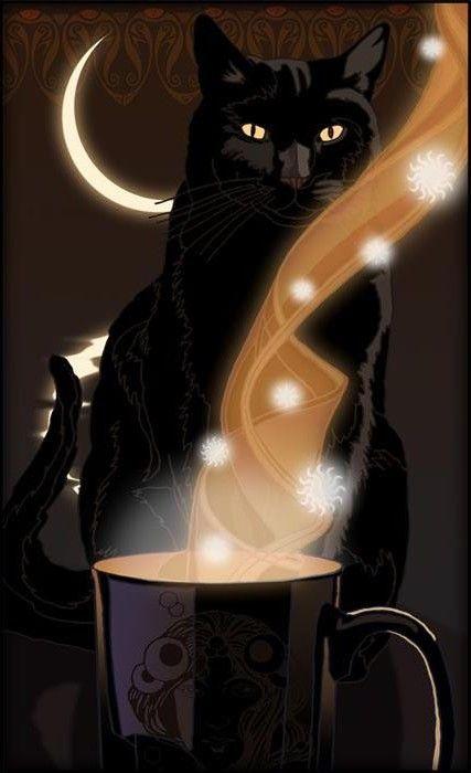 Il gatto lecca raggi di luna nella scodella dell'acqua, pensando che siano latte. (Proverbio indù)