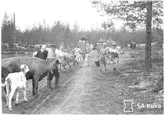 Finnish people living in Carelia evacuating during the war between Russia and Finland   Karjalaiset evakot