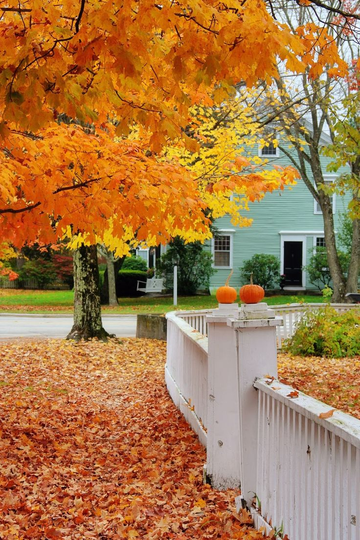 New England Living: Around the Village