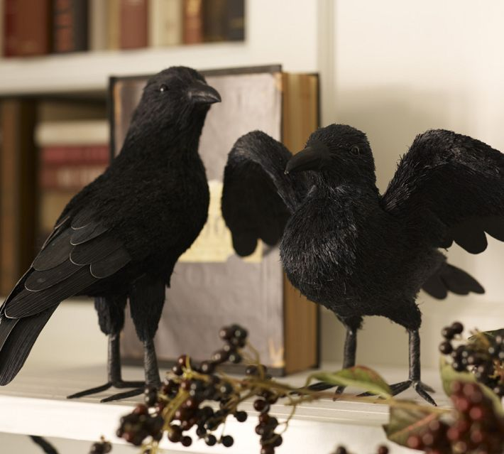 faux crows every witchy party must have so many uses centerpieces accents or in your face they work for halloween - Halloween Crow Decorations