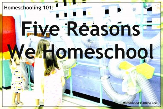 Five Reasons Why We Homeschool by Mom on a Dime