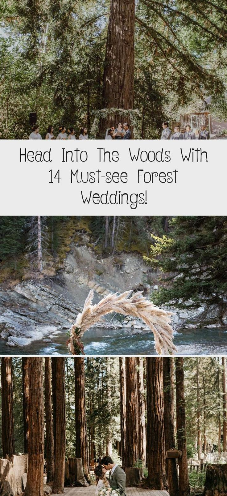 Feb 1, 2020 - dreamy weddings in the woods