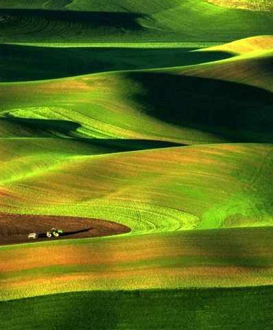 The Palouse mountain region in SE Washington state. This is the ONLY place that makes these huge tractors look tiny.