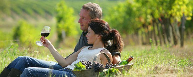 Wine Style Travel organiza rutas enoturísticas personalizadas desde Argentina al Penedès