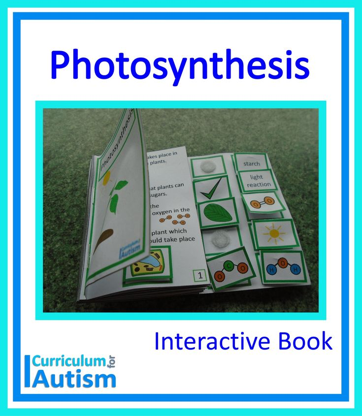 photsynthesis interactive site There's a lot of carbon in your body - in dna, proteins, carbohydrates, fats, and other key biological molecules how did that carbon get there drumroll photosynthesis.