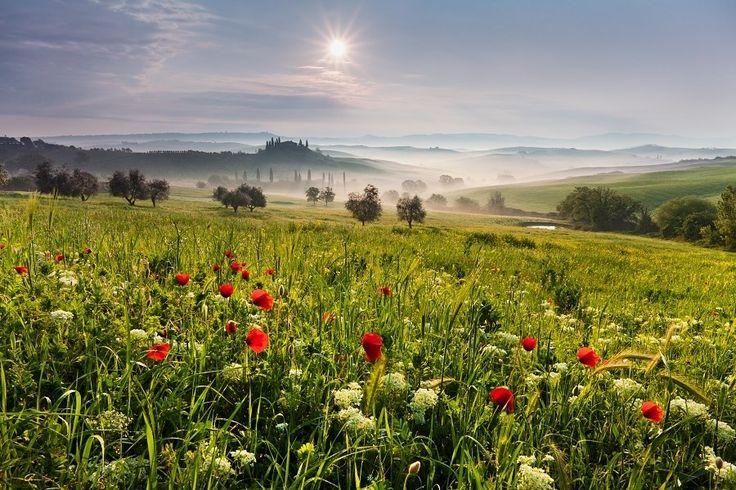 Красота русских полей  #красивые фото