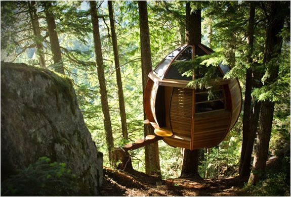 Sweet treehouse.