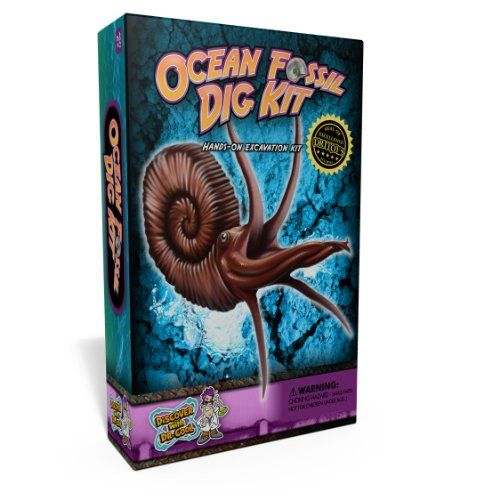 Discover with Dr. Cool Ocean Fossil Digging Science Kit Discover with Dr. Cool,http://www.amazon.com/dp/B0093X63SS/ref=cm_sw_r_pi_dp_IxHJsb0CT827GBZT
