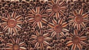 Картинки по запросу manualidades con semillas secas