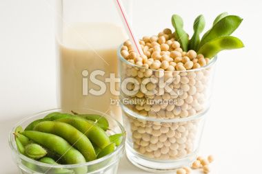Soy Milk Concept With Glass Filled Full of Loose Soybeans Royalty Free Stock Photo