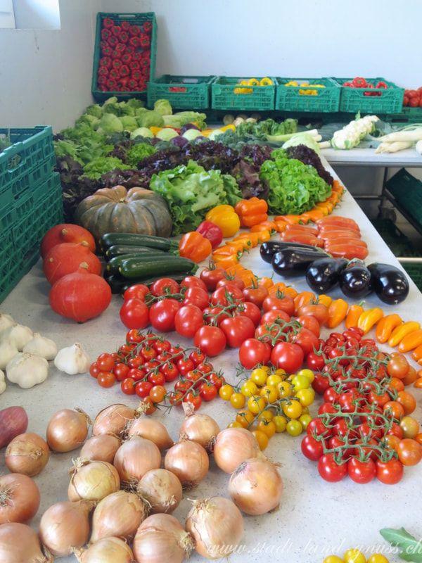 Solidarische Landwirtschaft. Gemeinsam Gemüse produzieren. Gemüseabo, Biogemüse, Solawi