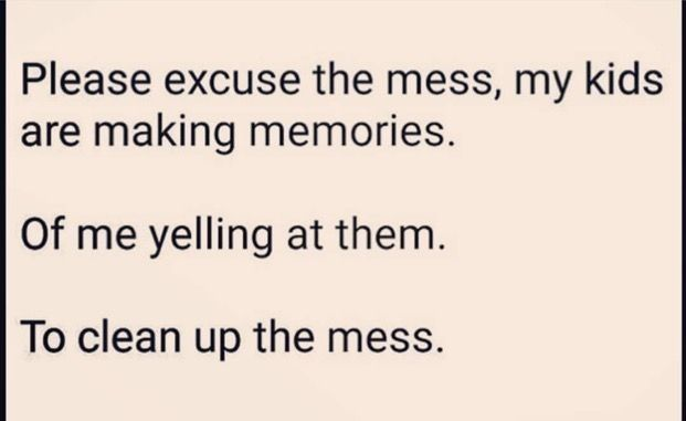 Please excuse the mess, my children are making memories...of me yelling at them...to clean up the mess. #parenting #gottaloveit