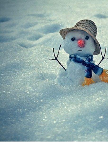 Schneemann | snowmen