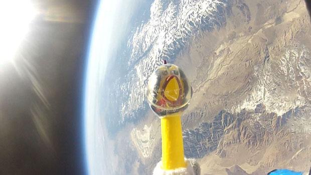 Camilla, a Galinha de Borracha Autronauta da Nasa