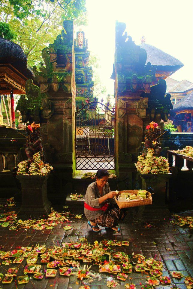 morning offering at Ubud, Bali