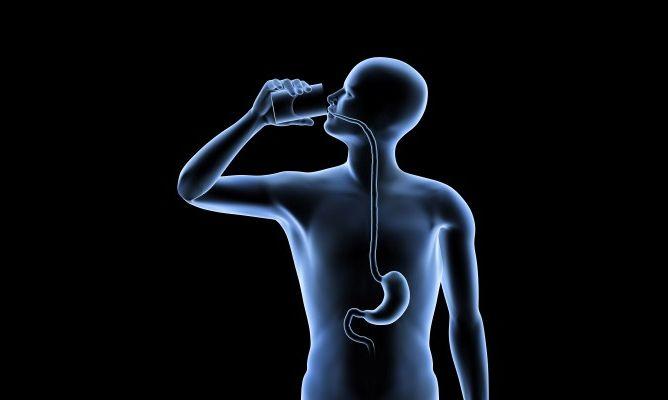 ESÓFAGO Y RELACIÓN EMOCIONAL El esófago es la parte del aparato digestivo que une la faringe con el estómago. Pasa por el cuello, el tórax y el diafragma...