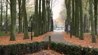 Hennie Völker-Dieben, voorzitter van de stichting Erfgoed Oud Poelgeest, vertelt over de zoektocht naar twee bijzondere objecten die ooit door Jan Wolkers uit het kasteel werden meegenomen...