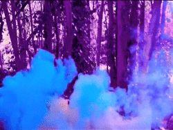 GIF фотографии трип радуга Прохладный дым хипстер Потрясающие деревья инди Гранж фиолетовый лес красочный туман мягкий гранж мел порошок