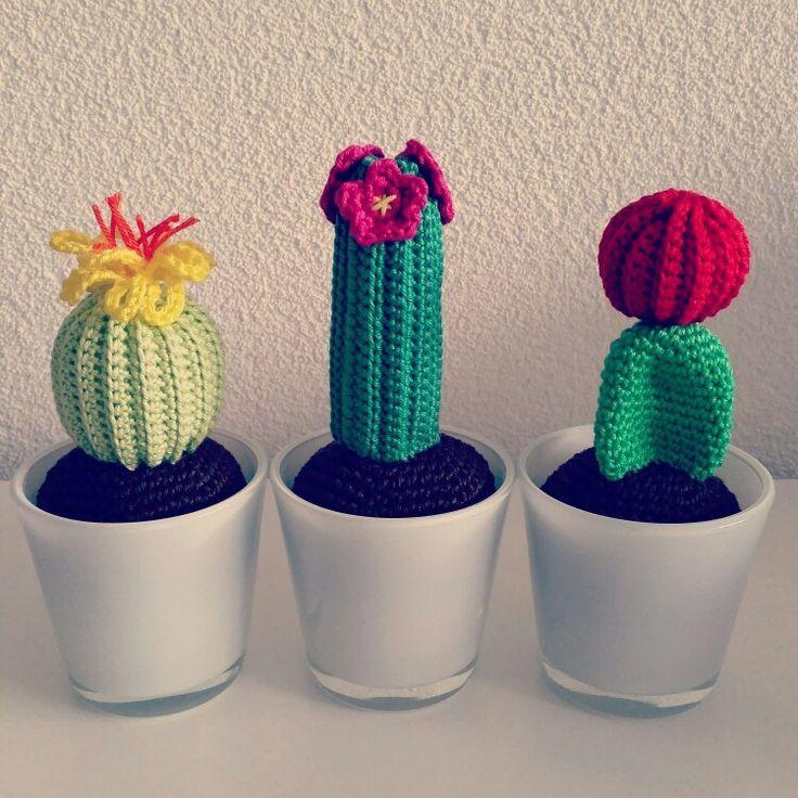 3 x een cactus (gehaakt)