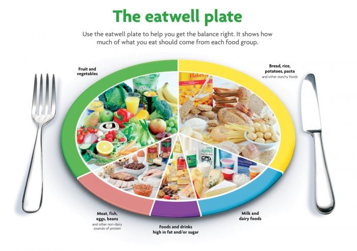 The Eatwell Plate - Healthy Sixpack Kitchen Calorie Diet