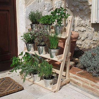 Wood Plant Theatre: Would be great for herbs by the kitchen door Tin pots or teracotta?