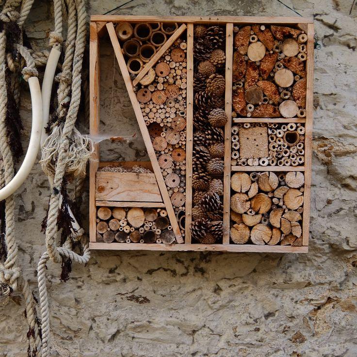 nichoir insectes nichoirs mangeoires et abris pinterest. Black Bedroom Furniture Sets. Home Design Ideas