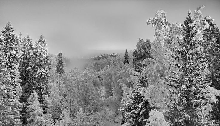 Wintery View from Hervanta Tampere