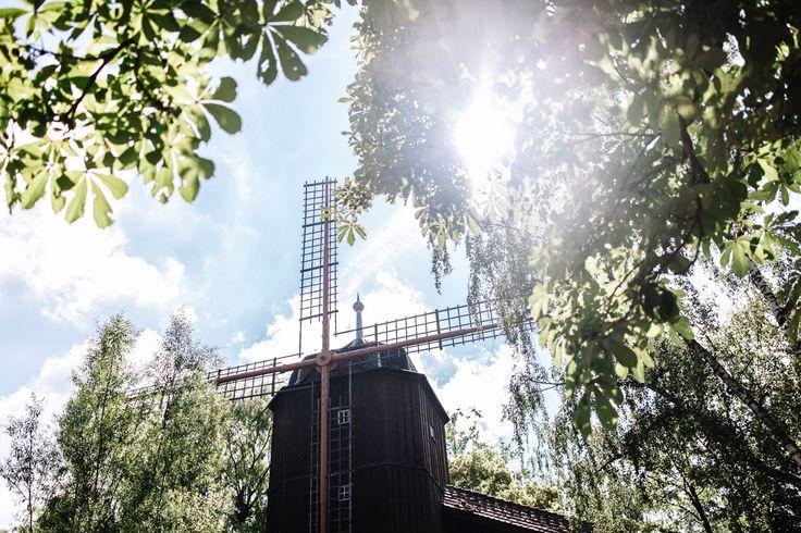 """Mit der Altweibermühle war Tripsdrill 1929 der erste Erlebnispark Deutschlands. In einer alten Sage heißt es, dass hier alte Frauen wieder """"junggemahlen"""" werden.   Foto: Sandbox Studio Photography"""
