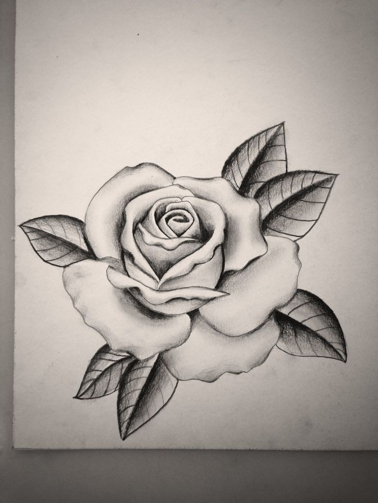 Black and grey rose by Mike Attack Instagram @mikeattack ...