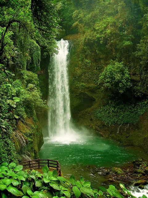 La Paz Waterfall, hidden in the rainforest of Costa Rica (by clickr88).
