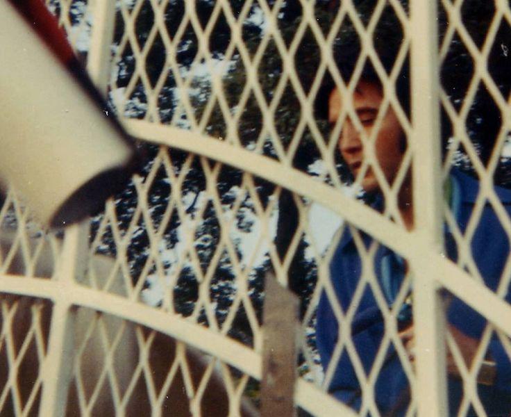 Elvis at the Graceland Gates