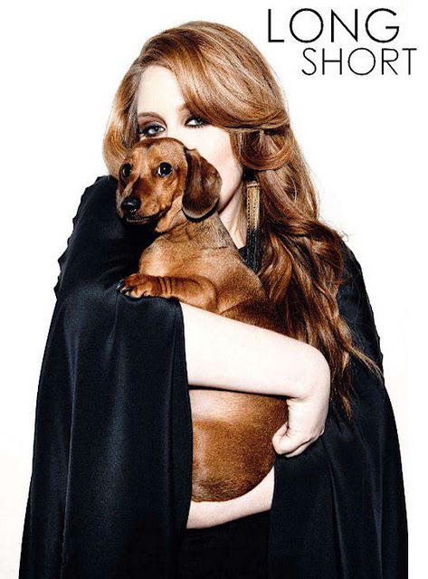 """Adele and the """"love of her life"""" Louie.  Love Adele; love Dachshunds."""